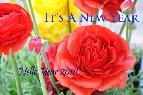 Newyear2011