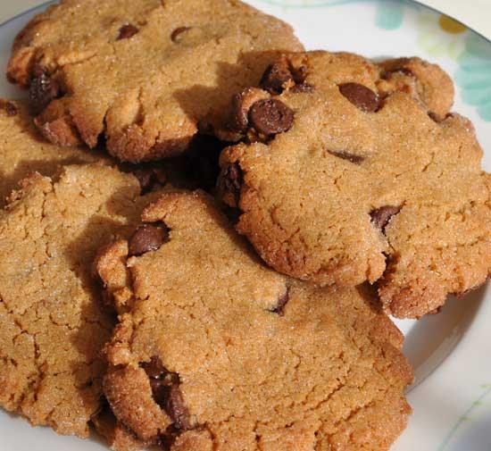 Peanut-Butter-Cookie-First